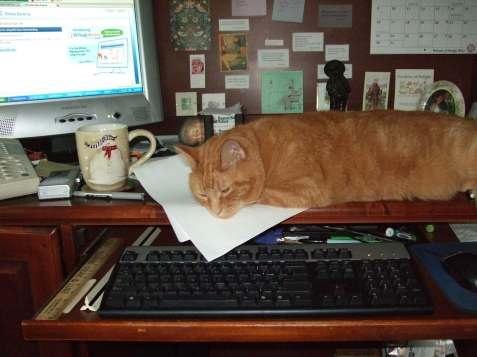 officehelper
